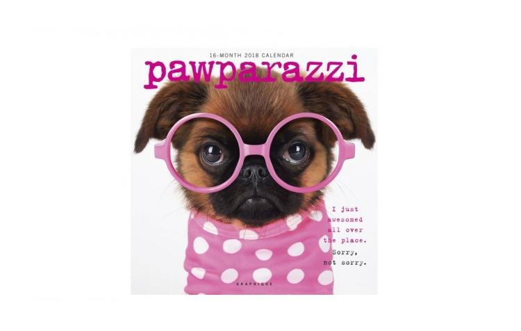 wall-calendar-2018-pawparazzi