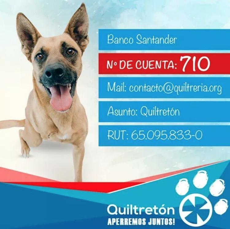 FUNDACION QUILTRETON